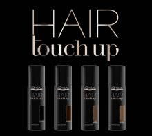Hair Touch up Camouflage racines Acajou